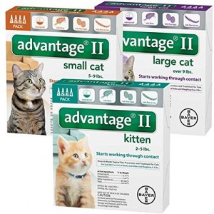 best flea treatment for cats